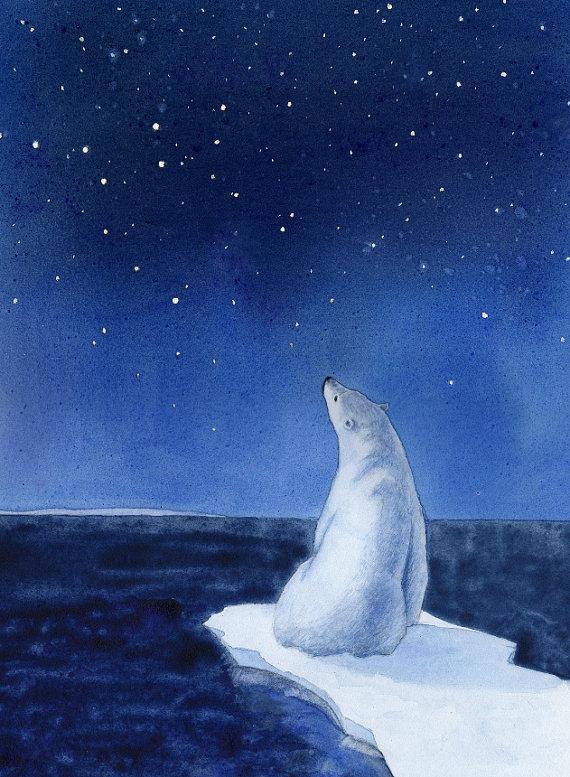 polar-bear-stars